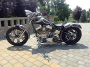 2014 Custom Built Chopper Hercules